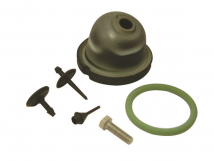 Berthoud Pump Repair Kit